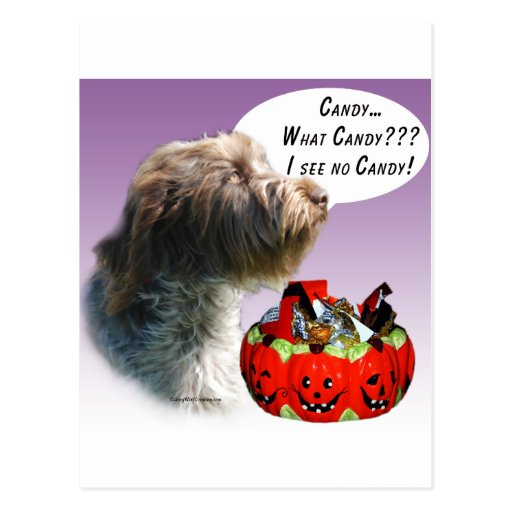 Caramelo el señalar Griffon Wirehaired Halloween Postal