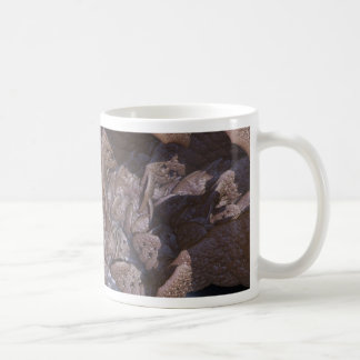 carapace mug
