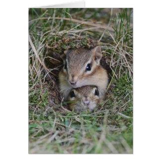 Caras adorables Smooshed de los Chipmunks del bebé Tarjeta De Felicitación