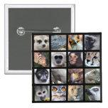 Caras del animal salvaje -- Mamíferos, reptiles, p Pin Cuadrada 5 Cm