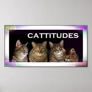Caras del gatito póster