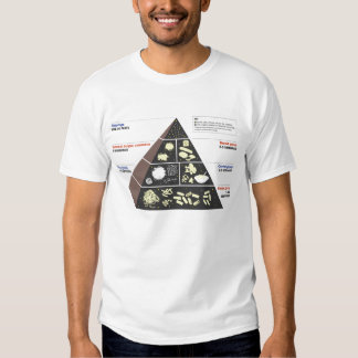 Carb Lover's Food Pyramid - Men's classic tee