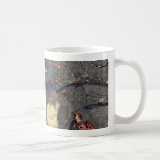 Carbonate rock with fossils coffee mug