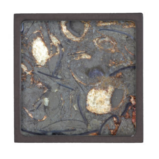 Carbonate rock with fossils keepsake box