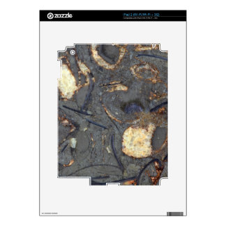 Carbonate rock with fossils skin for the iPad 2