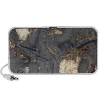 Carbonate rock with fossils mini speaker