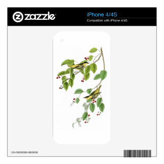 Carbonated Warbler John Audubon Birds of America Skin For The iPhone 4S