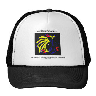 Carbonic Anhydrase (Chemical Structure) Trucker Hat