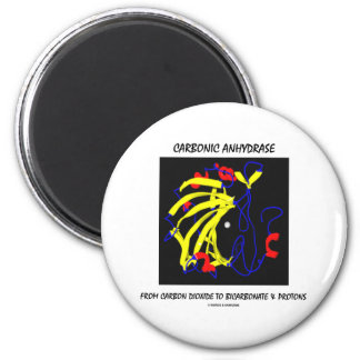 Carbonic Anhydrase (Chemical Structure) 2 Inch Round Magnet