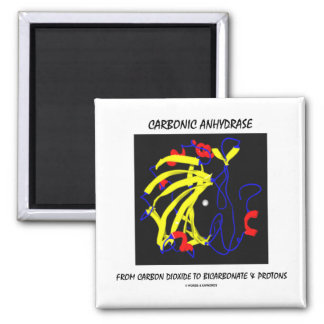 Carbonic Anhydrase (Chemical Structure) 2 Inch Square Magnet