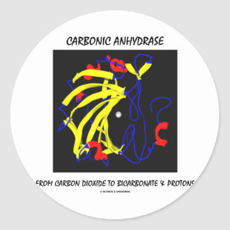 Carbonic Anhydrase (Chemical Structure) Classic Round Sticker