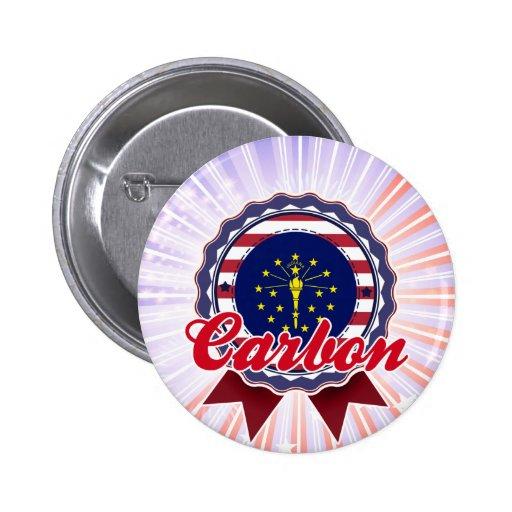 Carbono, ADENTRO Pins
