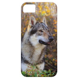 Carcasa IPhone 5/5s iPhone SE/5/5s Case