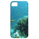 Carcasa iPhone 5 modelo fondo marino iPhone 5 Protectores