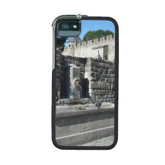 Carcassonne, France iPhone 5 Cover