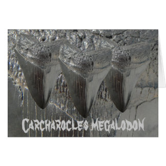Carcharocles megalodon greeting card
