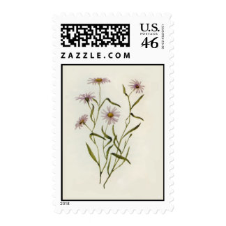 Card-002 Stamps