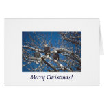 Card / An Eagle Christmas