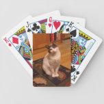 card bicycle card decks