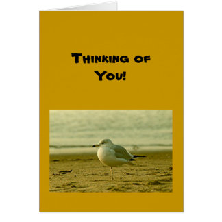 Card - blank - seagull - Thinking of You!