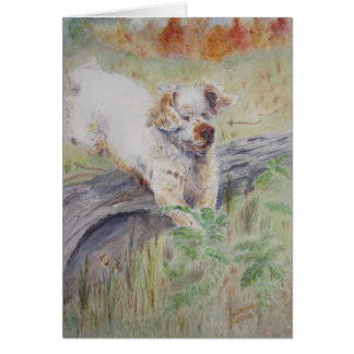 card - Captivating - Clumber Spaniel