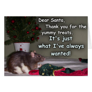 Rat Treat Gifts on Zazzle