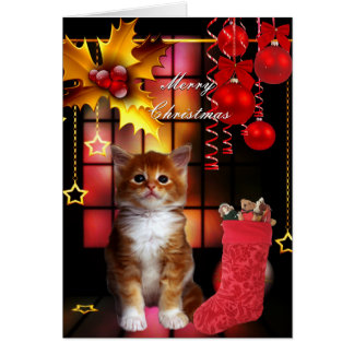 Card Christmas Xmas Cat Kitten