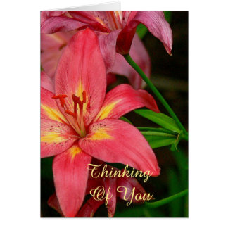 CARD, CORAL RED AND YELLOW DAYLILY/THINKING OF YOU CARD