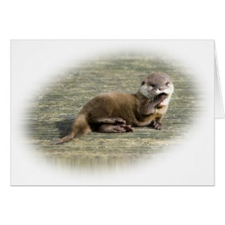 Card - Cute Baby Otter Yawning card