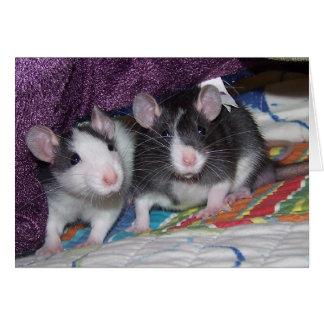 ~Card de las ratas del bebé Felicitaciones