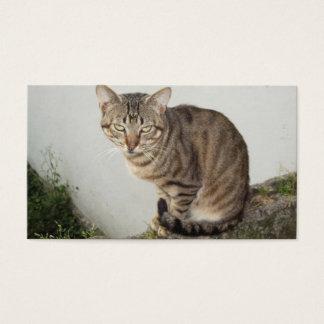 Card   De Visita Charming Cat