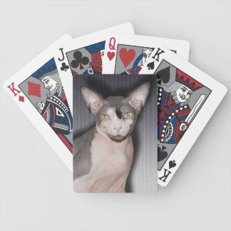 Card Deck | Sphynx Cat Ninja