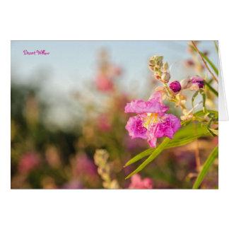 Card: Desert Willow Flower #6 Card