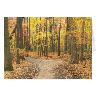 """Card, """"Fall Colors On Path Through Woods"""" Greeting Card"""