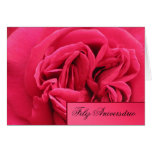 Card: Feliz Aniversário - Pink Rose