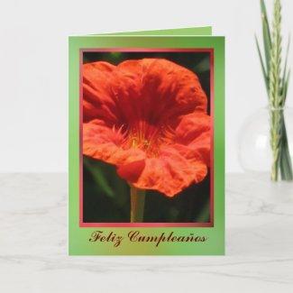 Card - Feliz Cumpleaños - Flor Roja-Naranja