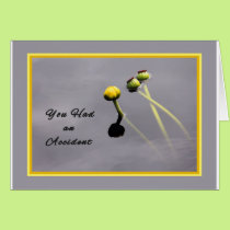 Card for Person Who Had and Accident