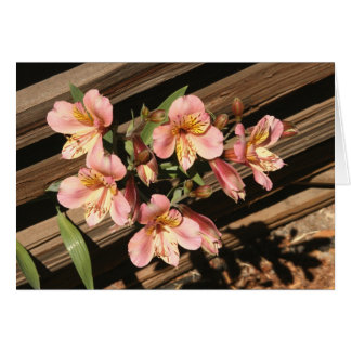 Card, FREESIAS AND FENCE