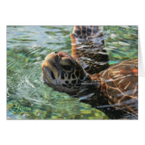 Card: Green Sea Turtle