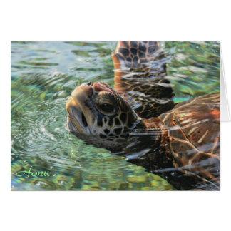 Card: Green Sea Turtle Card