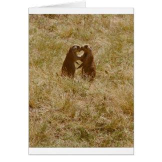 Card has cute photo of 2 prairie dogs 'chatting'