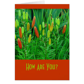 """card """"How Are You?"""" Floral (photog)"""