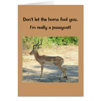 """card, Humorous, """"Don't Let the Horns Fool You"""" Greeting Card"""