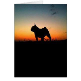 "Card of block ""Buldog For-pity-sun """
