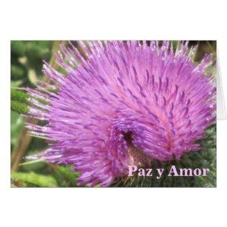 Card: Paz y Amor - Purple Wildflower