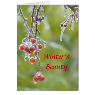 """CARD, PHOTOG. """"WINTER'S BEAUTY"""" RE GREETING CARD"""