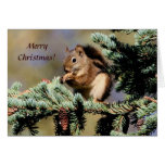 Card /  Red Squirrel / Christmas