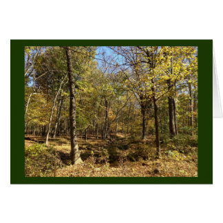Card: Shenandoah Forest with Stephen Hawking Quote Card