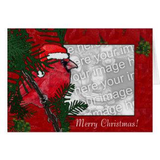 Card Template - Christmas Cardinal