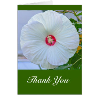 """Card, """"Thank You"""" White Hibiscus Card"""